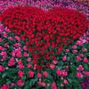 St  Valentine's Garden website