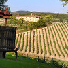 Tuscan Vineyard and press
