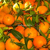 Oranges, Rome, Campo dei Fiori