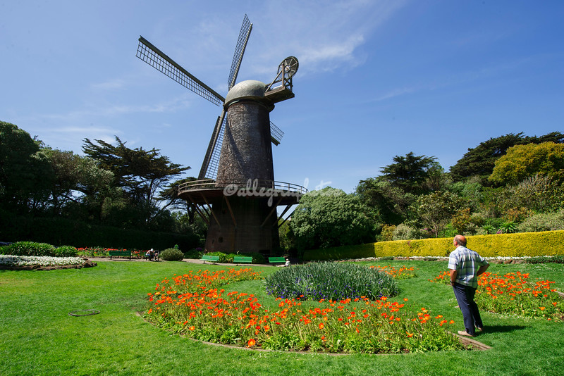 Dutch Windmill, San Francisco