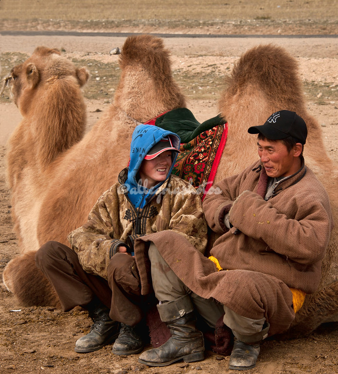 A pair of Mongolian herders relax next to a saddled two humped camel
