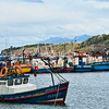 Fishing fleet at anchor at the Bahia Mansa fishing village, Punta Arenas, Patagonia, Chile