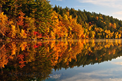 Teal Lake Autumn