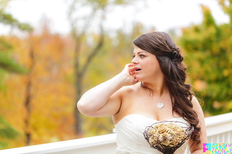 Nadine and Jirair Wedding 2014