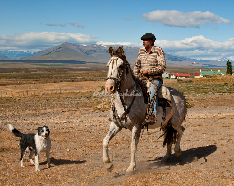 Gaucho and Dog, Torres del Paine, Patagonia, Chile
