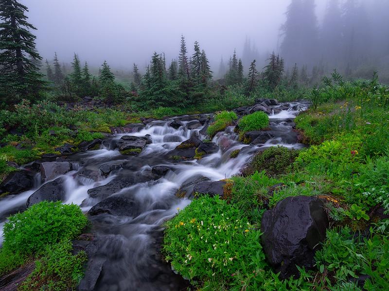 Foggy Paradise Creek Website