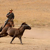 A Mongolian horse wrangler armed with a lasso chases after a horse on steppes