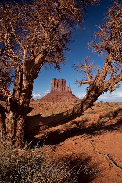 This image can be found in the Landscapes->Monument Valley gallery.