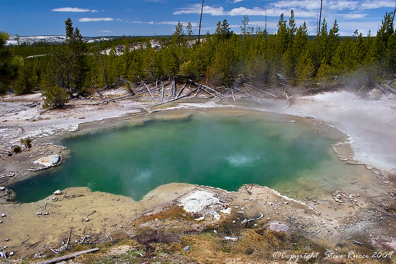 Emerald Spring, Norris Geyser Basin - Yellowstone National Park