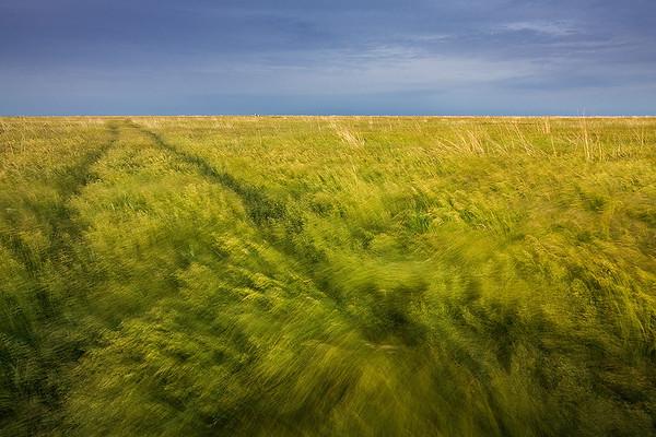 Prairie Wave