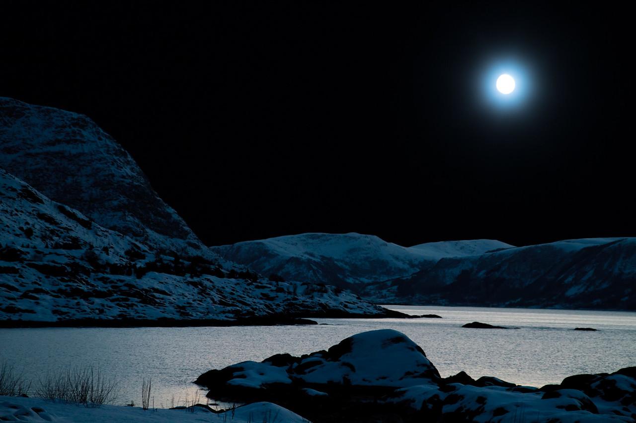 Moonlight Blues