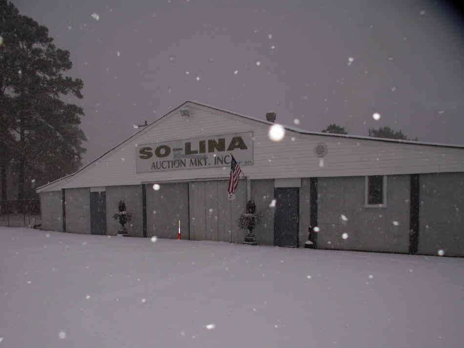 Snow 2011 (First time ever weather conditions cancelled an auction at So-Lina!!)