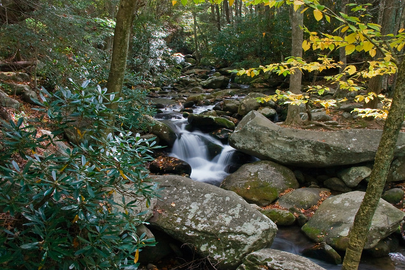 Great Smoky Mountains National Park, Tennessee 0039