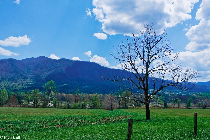 20090425 Smoky Mountains 0062