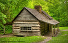 """Olge Cabin"" on Roaring Forks Road in the Great Smoky Mountains National Park. The greens are really green just before Memorial Day. No moonshine here!"