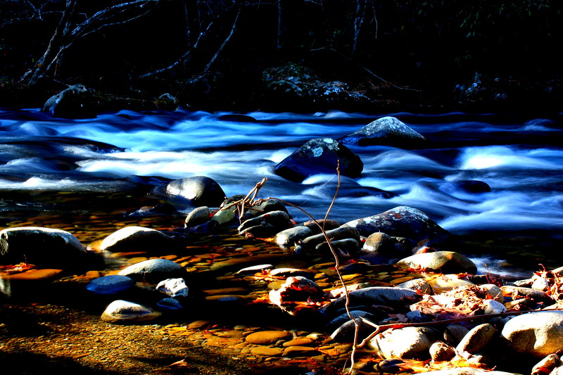 Elkmont Campgrounds  -- click image for larger view