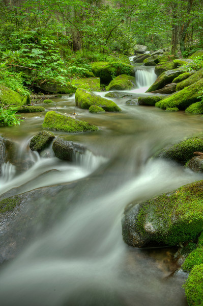 """Roaring Forks Stream"" Just a scene close to the road on the Roaring Forks auto loop."