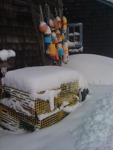 Snowy traps