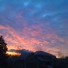 Sunrise across my street.