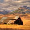 Old Barn in San Benito County.