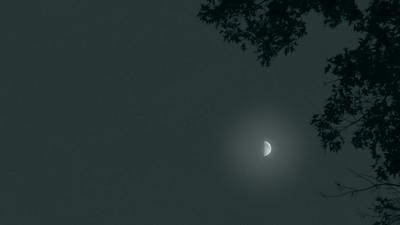 Lunar Study #21