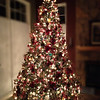 Our family room tree, after Carolyn's magic.
