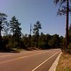 McLane Road