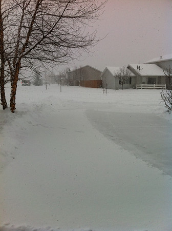 It was snowing so hard that by the time we got done shoveling the driveway was already full of snow again  The cleared spot was when we shoveled back up to the house again. Feb 2011
