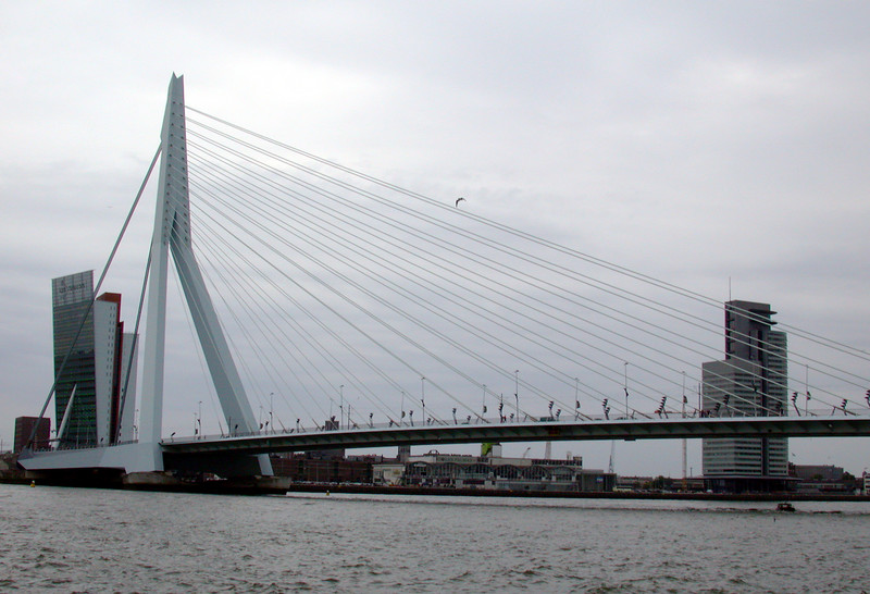 The Erasmus Bridge,