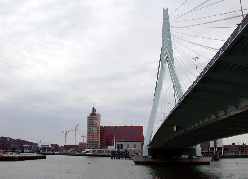 Erasmus Bridge.