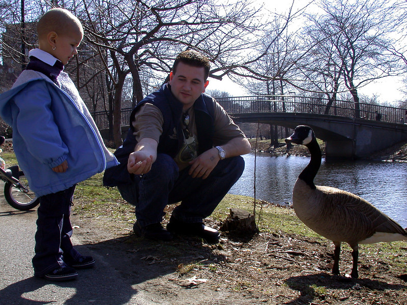 Feeding the Goose.