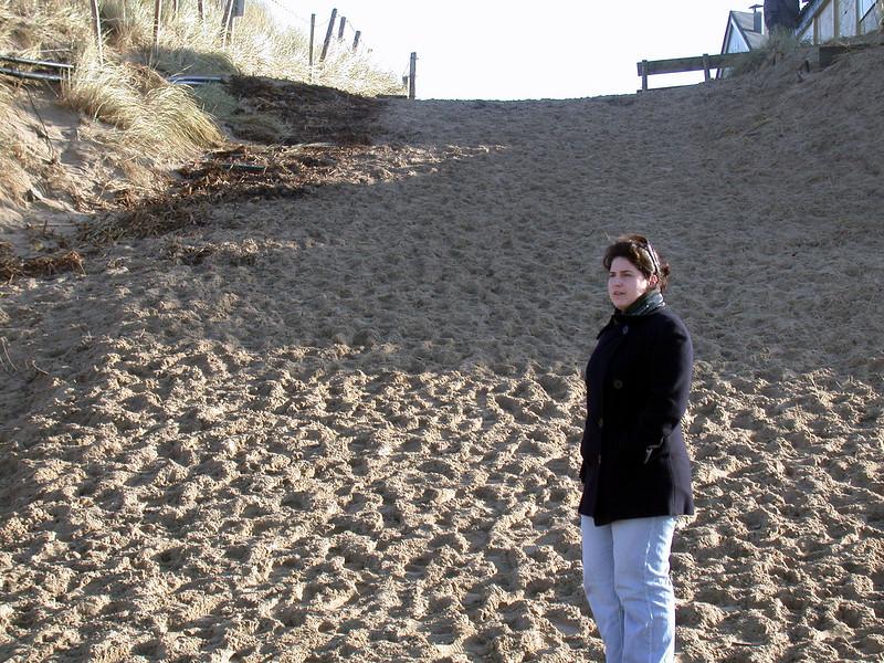 Bergen aan Zee: Beach (2)