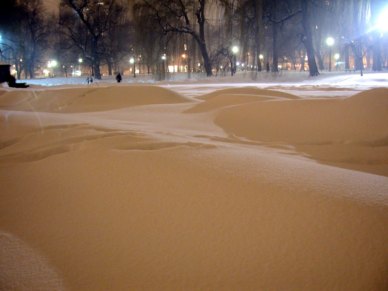 The pond in Public Garden, snow dunes on the ice.