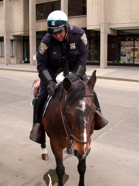 Police on horse (1).