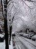Saint Germain Street in Back Bay Boston, MA. Its first snow of the year, 27 Nov 2002.