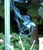 Smoke (2).