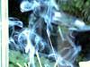 Smoke (1).