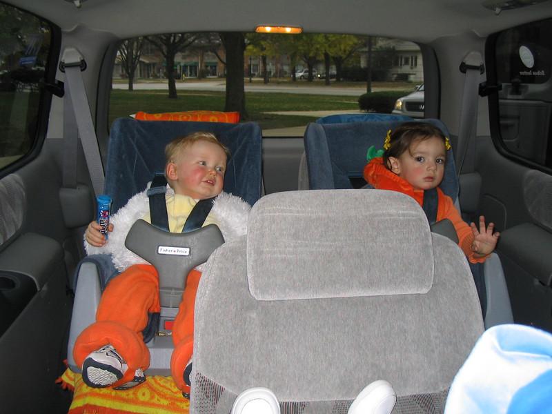 chicken in a car seat