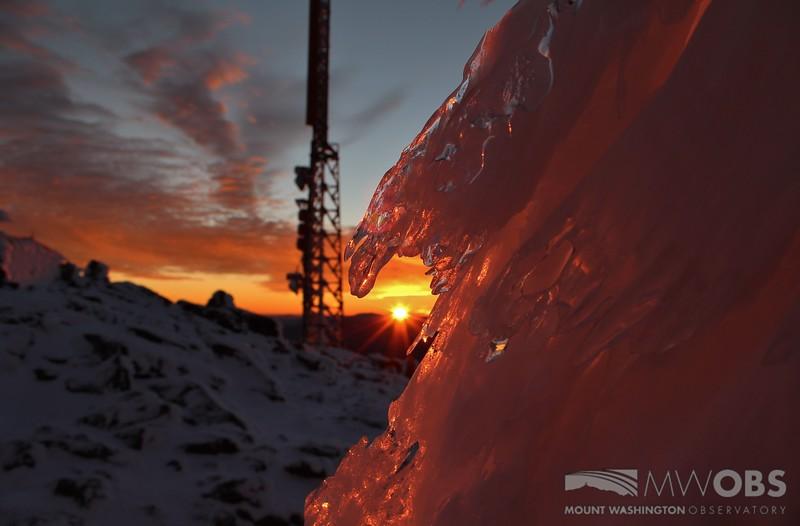 Rime ice at sunset 7 Jan 2016