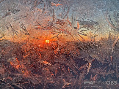 Frost lit at sunrise 26 March 2019