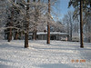 Snow - March 2009 028