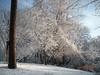 Snow - March 2009 026