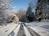 Snow - March 2009 027
