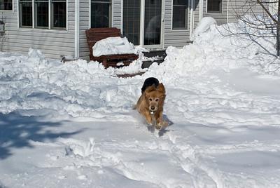 March 2008 Snow Storm 12 030908