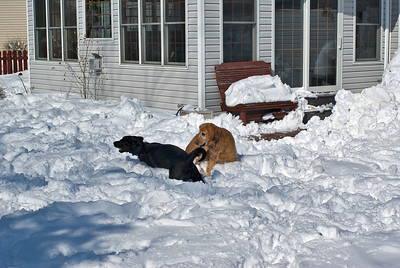 March 2008 Snow Storm 15 030908