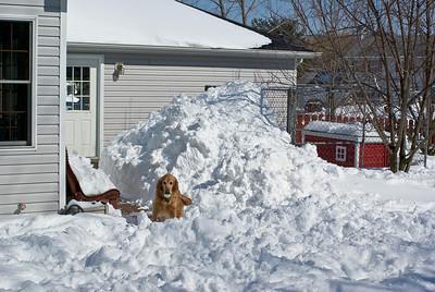 March 2008 Snow Storm 11 030908
