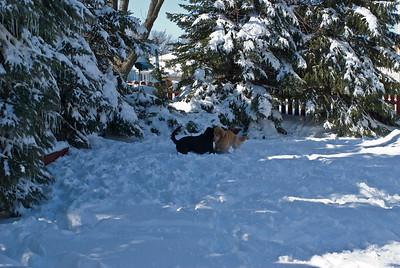 March 2008 Snow Storm 16 030908