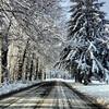 A wintry road on Tuesday, Feb. 4, 2014. Photo by Dan Watkins.