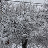 """Patt Landes submitted this photo via Facebook and said, """"How beautiful. Charge your phones and devices. Power out on the east side of Pottstown but not neat Hanover and Beech"""""""