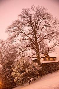 Snow in NY_0032